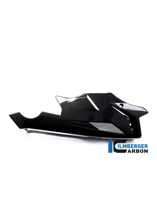 Carbon bellypan BMW S1000R Naked 2014-2016