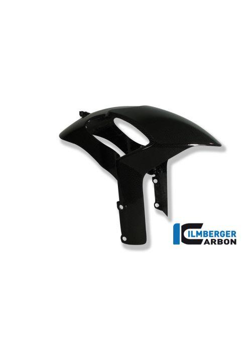 Front fender carbon Monster 796