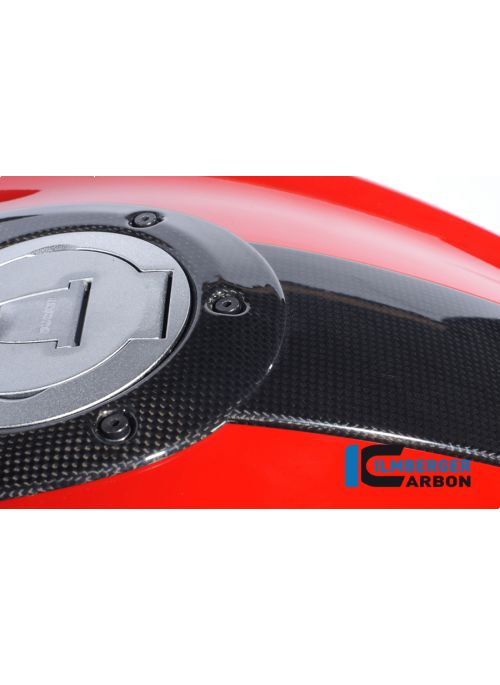 Center tank console carbon Monster 696