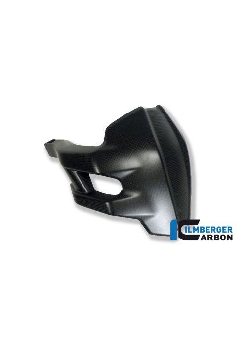 Carbon splash guard Multistrada 1200 2013-