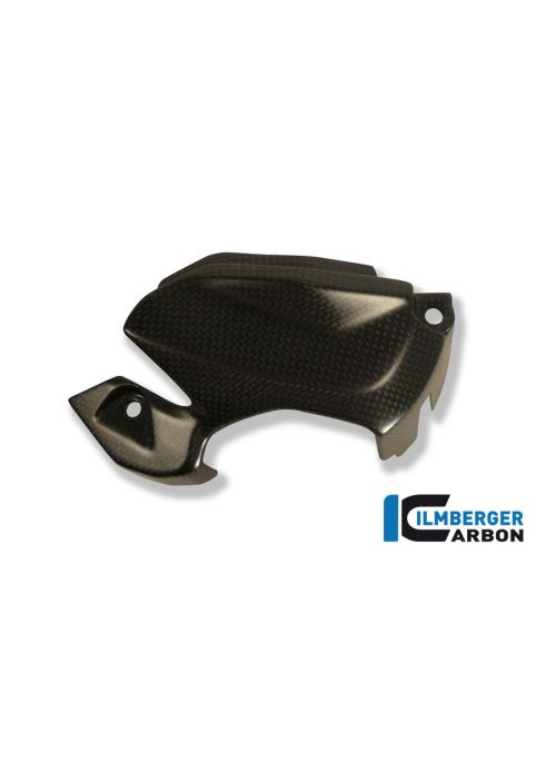 Side cowl insert left side carbon 1199 Panigale (S)