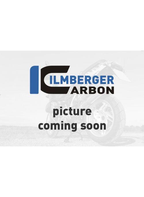 Radiator Cover gloss Panigale V4 / V4S