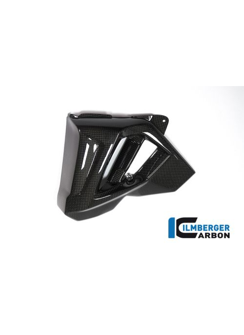 Radiatorcover links carbon BMW F800R 2015-