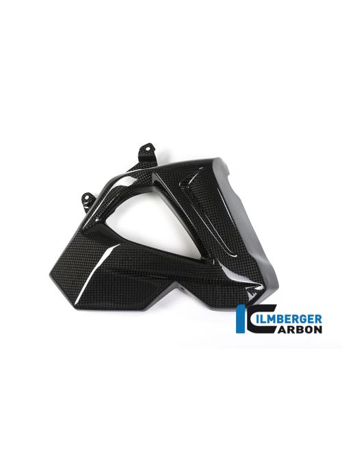 Radiatorcover rechts carbon BMW F800R 2015-