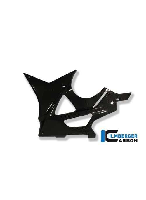 Onderkuip links carbon BMW S1000RR 2009-2011
