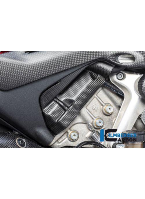 Nokkenas cover rechts mat carbon Panigale V4 / V4 S