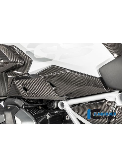 Luchtgeleider links Carbon BMW R1250GS 2019+