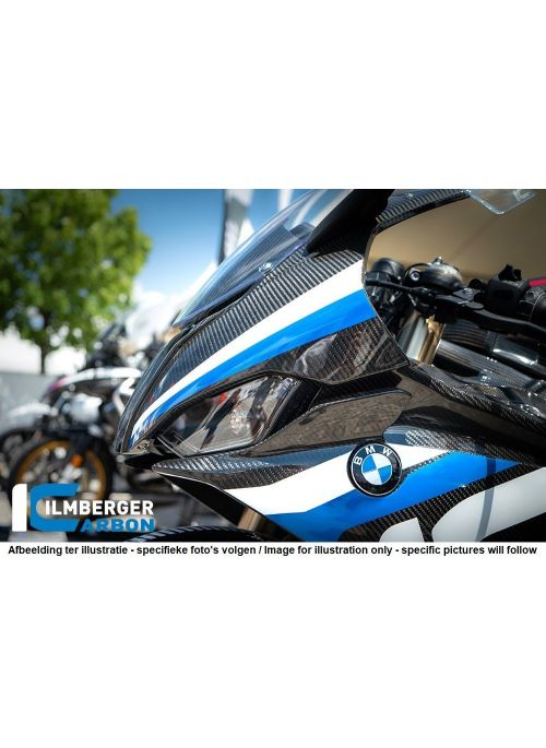 Crashpad on the Frame right BMW S1000RR Racing 2019+