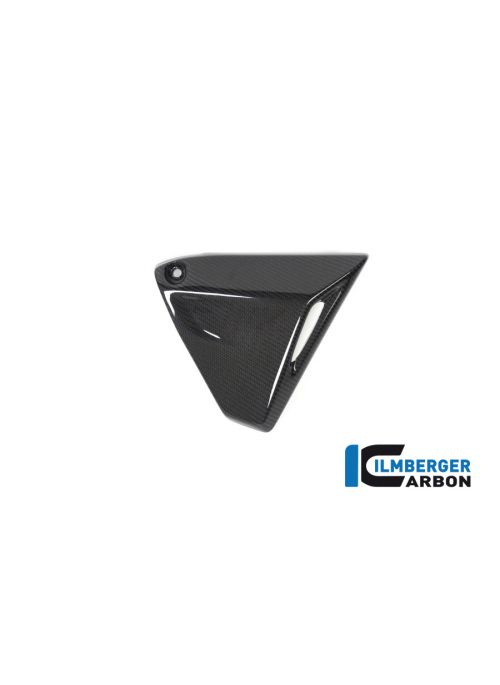 Frame Triangle Cover right Side BMW R1250R LC 2019+