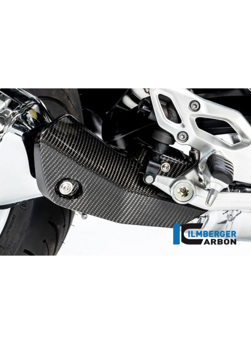 Front Silencer Protector BMW R1250R LC 2019+