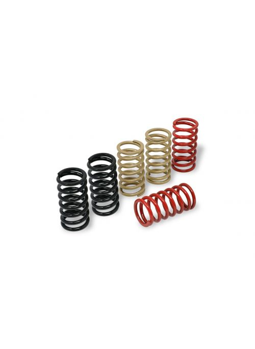 Clutch Spring Kit 38mm Ducati Dry Clutch