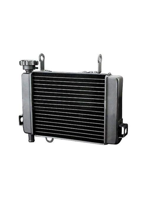 Radiator CBR125