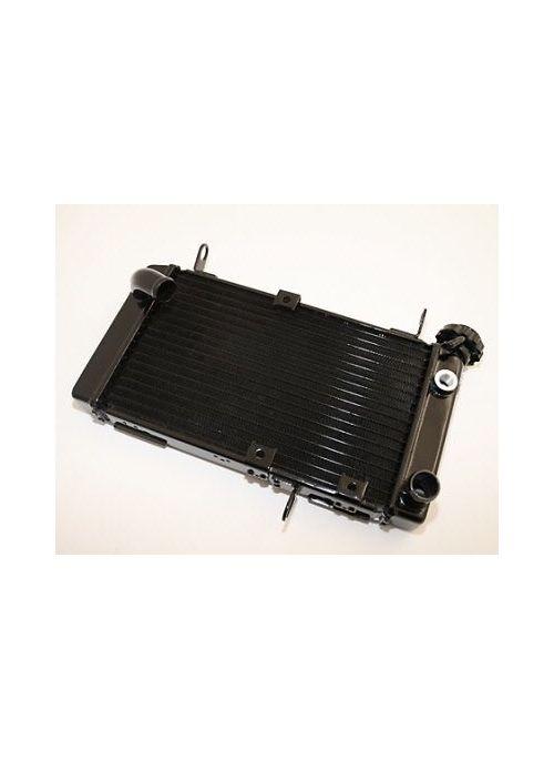 Radiator SV650 99-02