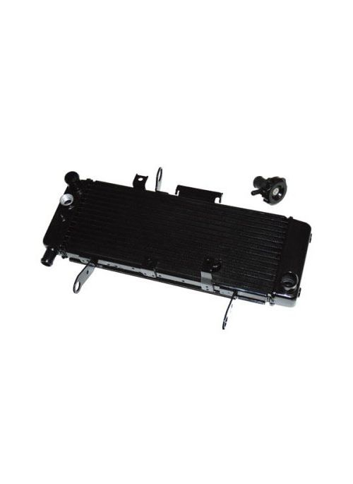 Radiator SV650N 03-04
