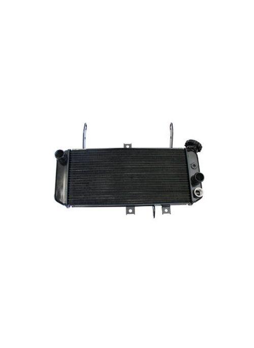 Radiator SV650S/N 05-