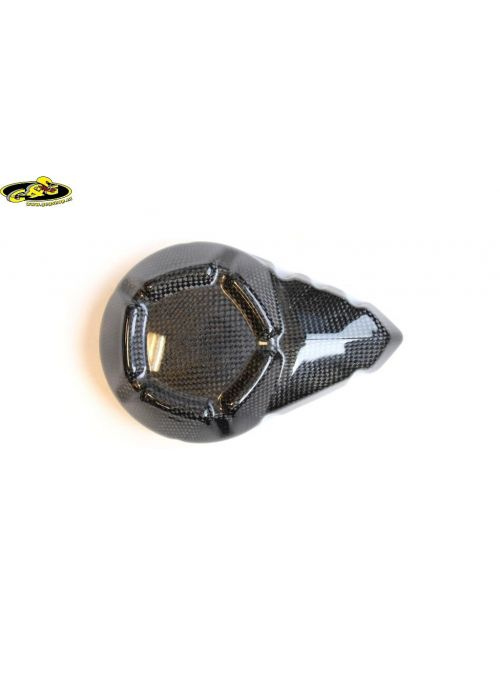 Carbon dynamodeksel cover Z800