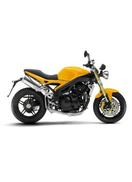 Speed Triple 1050 05-07