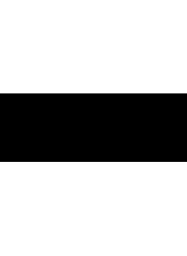 LiteLok motor slot